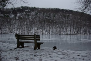Bench by the Frozen Reservoir